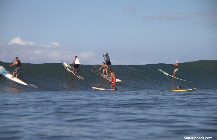 Shortboarder – Longboarder – Stand Up Paddle Surfer