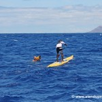 Kai_Lenny_and_ocean_paddler_TV_cameraman