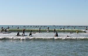 SUP Racer kämpfen sich durch die Wellen