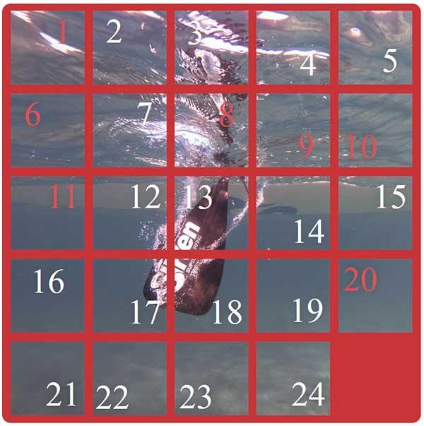 SUP-Adventkalender
