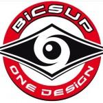 BIC_One_Design_logo
