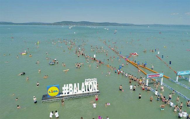 balaton-schwimm-festival
